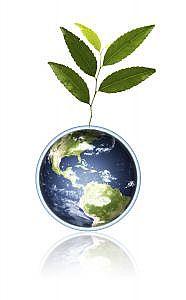 Politiche ambientali produzione olio extravergine