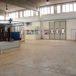 Visite turistiche in frantoio a Carmiano, Lecce