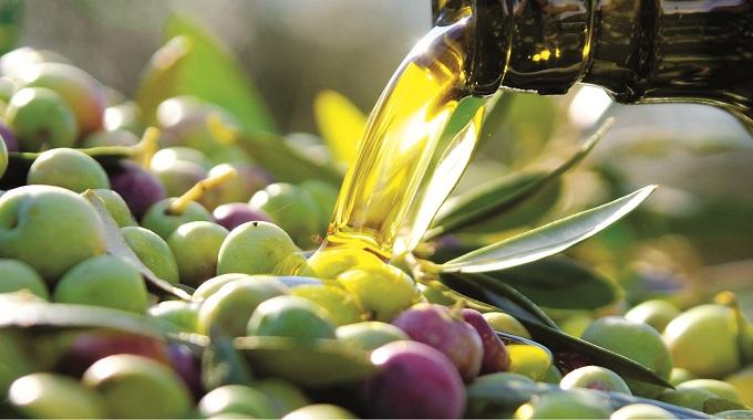 Cosa è l'acidità dell'olio extravergine di oliva
