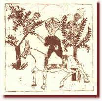 Ulivo, origini, miti e leggende