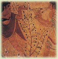 Storia dell'ulivo e origini