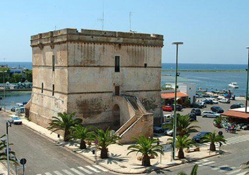 A Porto Cesareo e Torre Lapillo la vendita di olio extravergine