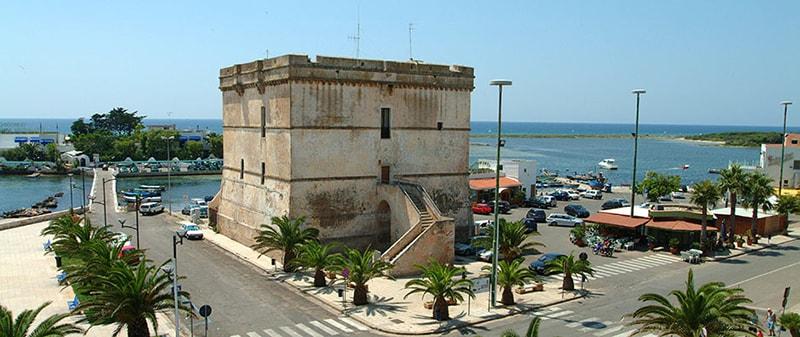 Vendita olio extravergine a Porto Cesareo e Torre Lapillo