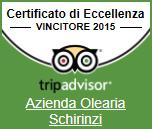 vincitore premio eccellenza 2015 tripadvisor