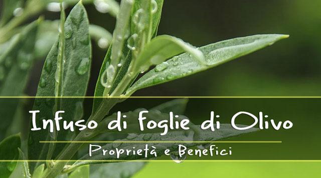 Come curarsi con estratto di foglie di ulivo