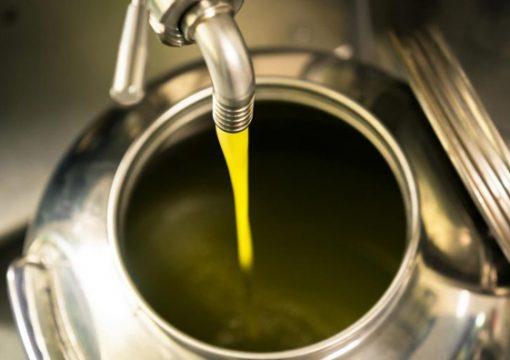 Divieto di vendita olio di oliva sfuso