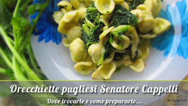 Vendita Orecchiette Pugliesi grano Senatore Cappelli del Salento