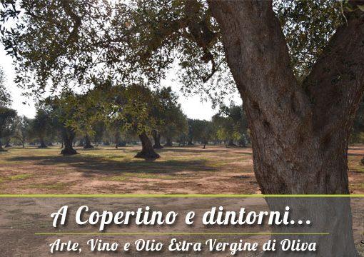 A Copertino e dintorni: Vendita Olio Extravergine del Salento
