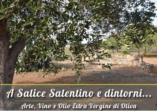A Salice Salentino e dintorni: Vendita Olio Extravergine del Salento