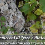 A Monteroni di Lecce la vendita dell'olio extravergine del Salento