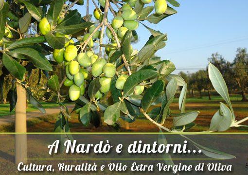 A Nardò e dintorni: vendita olio extravergine pugliese
