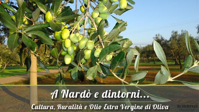 Vendita Olio Extravergine di oliva a Nardò in Puglia, nel Salento