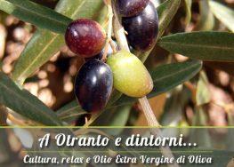 A Otranto e dintorni: Vendita Olio Extravergine del Salento