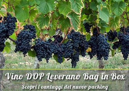 Vino DOP Leverano Salento: ecco dove trovarlo in Bag in Box (BiB)!