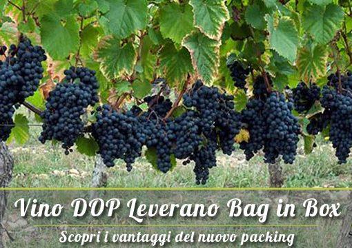 Vino DOP Leverano Salento: ecco dove trovarlo in Bag in Box (BiB)!