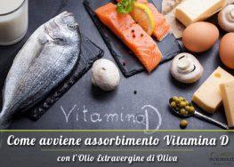 Perché l'Olio Extravergine favorisce assorbimento vitamina D? Ecco a cosa serve